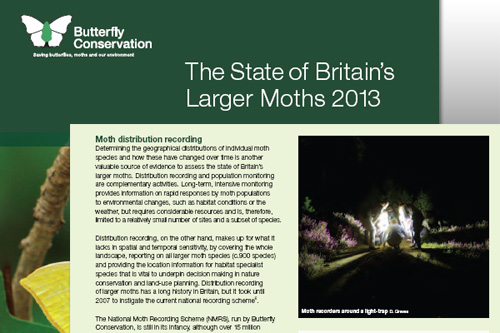 Butterfly Conservation: Moth Report 2013