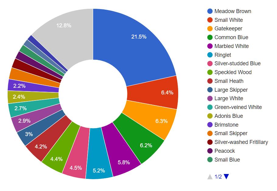 Butterfly data: pie chart